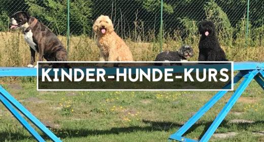 kinder-hunde